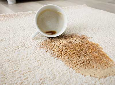 Coffee cup that has been knocked over and coffee spilled on area rug.