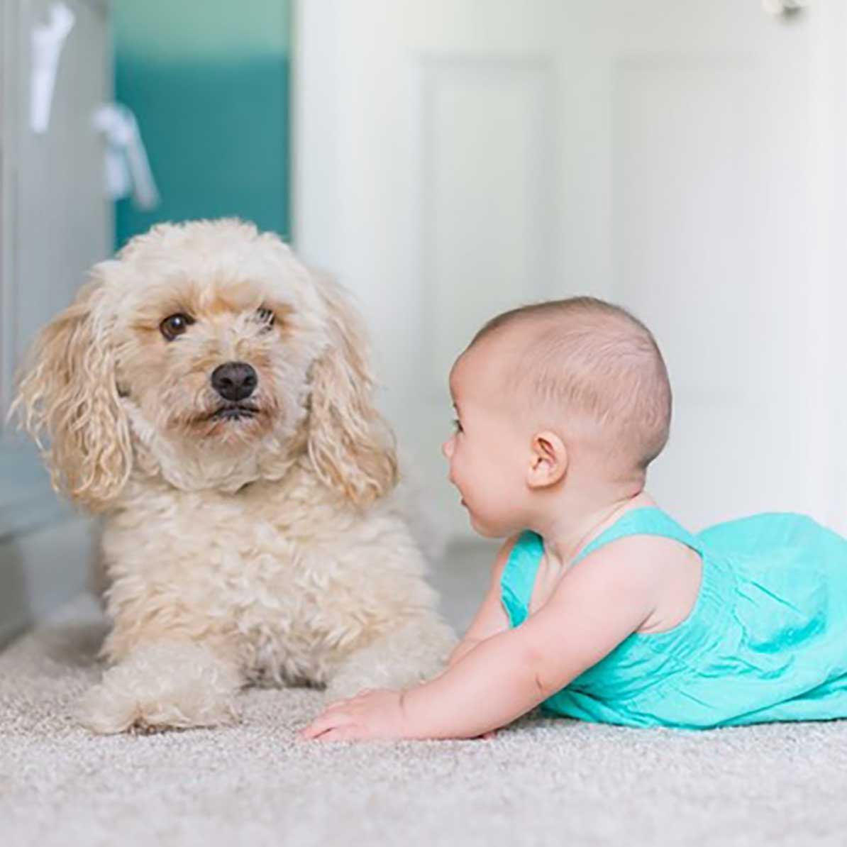 Puppy and baby laying on rug.